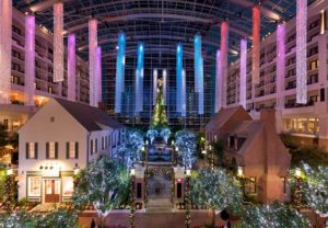 Gaylord National Christmas Tree