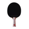 JOOLA INFINITY BALANCE Table Tennis Racket with Method 38 Rubber (flared)